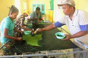 Batik Ciprat Langitan, Ladang Rezeki bagi Penyandang Disabilitas Desa Simbatan