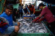 Nge-Tweet Soal Impor Ikan Asin, Tengku Zulkarnain Disemprot Susi Pudjiastuti