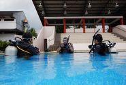 Tak Bisa Berenang Bukan Kendala Belajar 'Diving'
