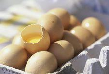 23 Kasus Keracunan Salmonella, Sejumlah Telur Ditarik di Sydney