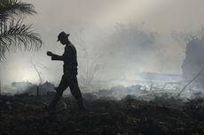 9 Daerah di Indonesia Waspada Kebakaran Hutan, Mana Saja?
