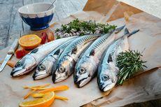 Serba-serbi Hewan: Ikan Hidup di Air, tapi Kenapa Bau Amis?