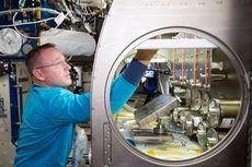 Ini Alasan NASA Kirim 20 Tikus ke Ruang Angkasa