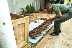 Dandim Pastikan Tak Ada Lagi Mortir yang Terkubur di Rumah Warga di Bandung