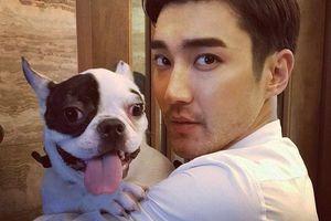 Karena Lima Jempol Siwon Super Junior, Para Penggemar Agnez Mo Heboh