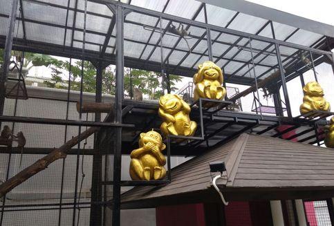 Bos Properti Sulap Rumahnya di Bandung Jadi 'Rabbit Town'