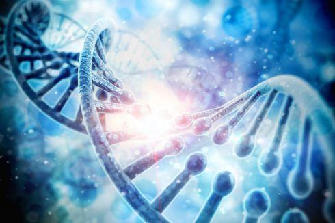 Para Peneliti Temukan Kode Genetik untuk Monogami