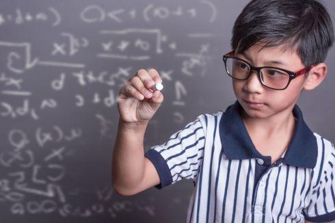 Anak Memiliki Kecerdasan 'Logis Matematik'? Pahami Cirinya