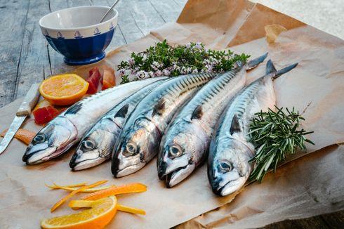 Pasokan Ikan Tergantung Daerah Lain, Palembang Dorong Budidaya Ikan