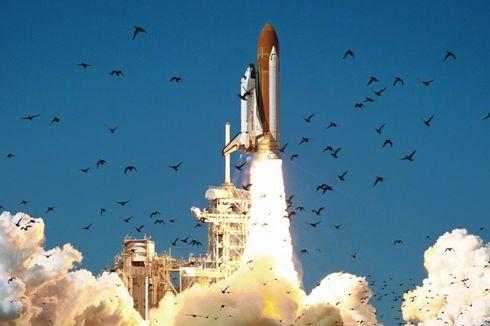 Kotoran Burung Bisa Halangi Perjalanan Roket Anyar Elon Musk ke Mars