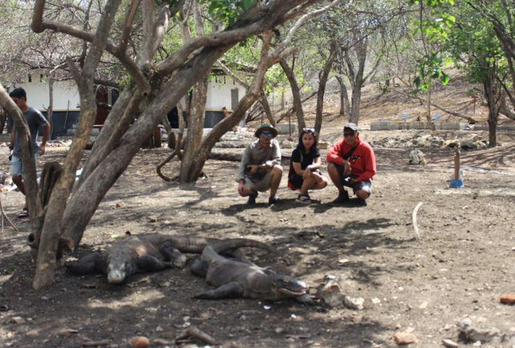 Wisman Batalkan Kunjungan ke TN Komodo, Ini Alasannya...