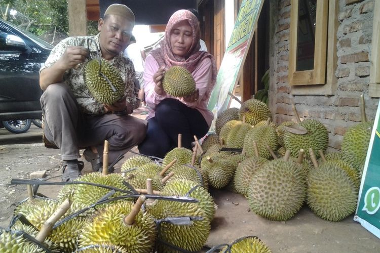 Amrondzi memilih buah durian yang dijual di pinggir jalan Kaliwungu-Boja, Kendal, Jawa Tengah.