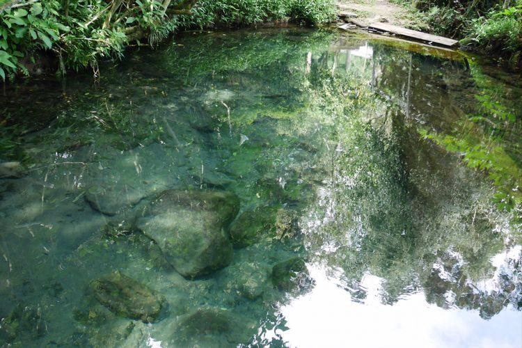 Mata air yang ada di obyek wisata Situ Cisanti di Bandung, Jawa Barat, Senin (25/12/2017).