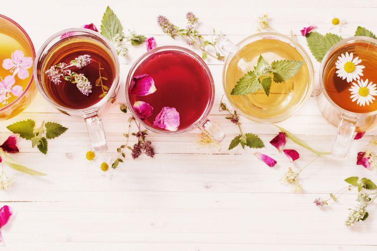 Ilustrasi berbagai macam teh