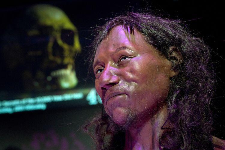 Hasil rekonstruksi Cheddar Man oleh Natural History Museum and University. / AFP PHOTO / Justin TALLIS