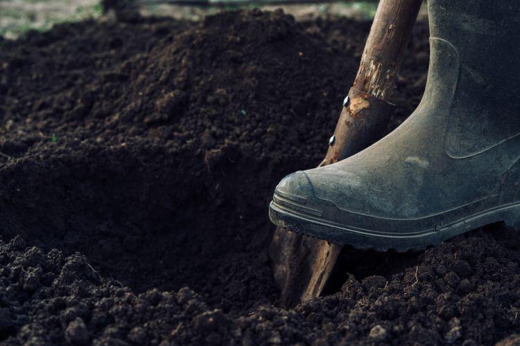 ilustrasi menggali tanah