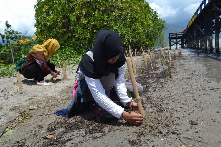 Pohon bakau atau mangrove ditanam di pesisir pantai teluk Palu, Minggu (22/4/2018).