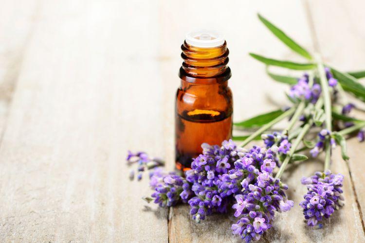 Ilustrasi minyak esensial lavender