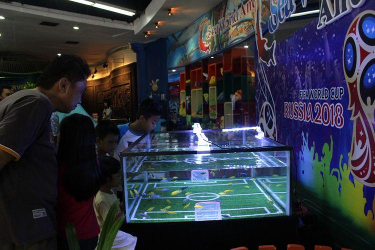 Aquariun berdekorasi lapangan bola memperingati Piala Dunia di Sea World Ancol.