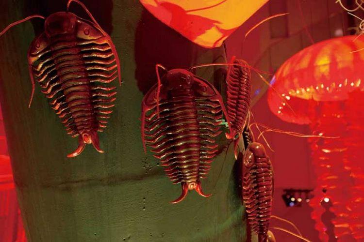 Era trilobit menampilkan model trilobit (artropoda yang hidup di laut) dan termasuk makhluk paling sejahtera di bumi pada zamannya.