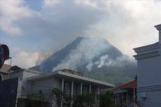 Ini Fakta Baru Kebakaran Hutan Gunung Panderman, Kembali Terbakar hingga Rusak Habitat Elang Jawa