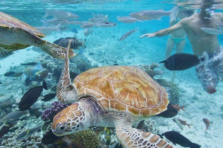 Bora Bora, Polinesia, Perancis.
