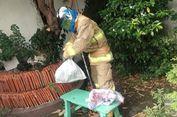 Selain Kasus Kebakaran, Pemadam Juga Kebanjiran Permintaan Evakuasi Hewan