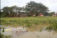 Korban Banjir Terganggu Eceng Gondok, Butuh Bambu Sebagai Penghalang