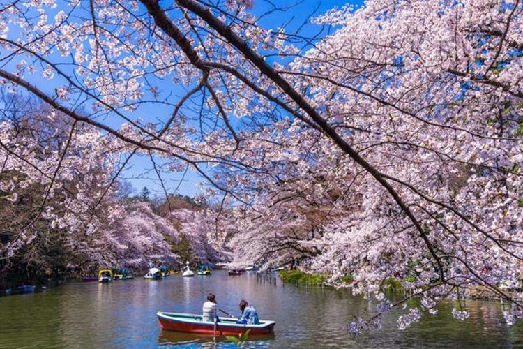 Taman Inokashira Onshi