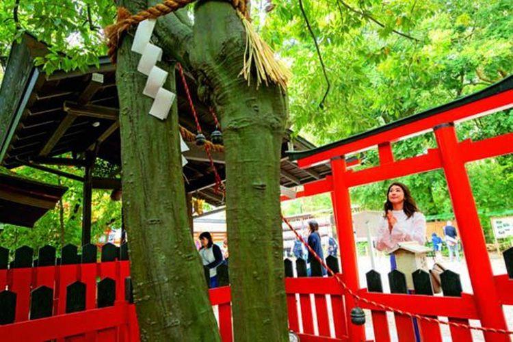 """Ada kepercayaan jika seseorang membunyikan lonceng """"Renri no Sakaki"""" dari pohon ini, maka orang tersebut akan mendapatkan pasangan yang baik."""