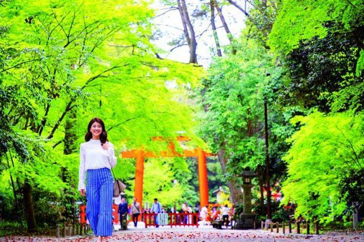 Hutan Tadasu no Mori Forest memiliki luas 120.000 meter persegi.