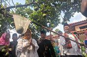 Kampung Cipedak Jagakarsa Dinobatkan Jadi Kampung Alpukat