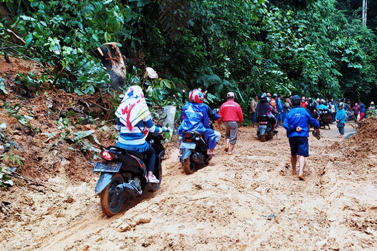Kondisi jalan lintas Liwa (Lampung Barat) - Krui (Pesisir Barat) yang merupakan penghubung menuju Provinsi Bengkulu.