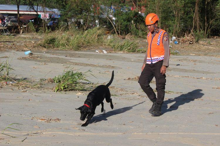 Seekor anjing pelacak diturunkan untuk menyisir aroma tak sedap yang diduga jenazah korban banjir bandang, Sabtu (23/3/2019)