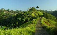 Menyusuri Jalan Setapak di Bukit Campuhan Ubud