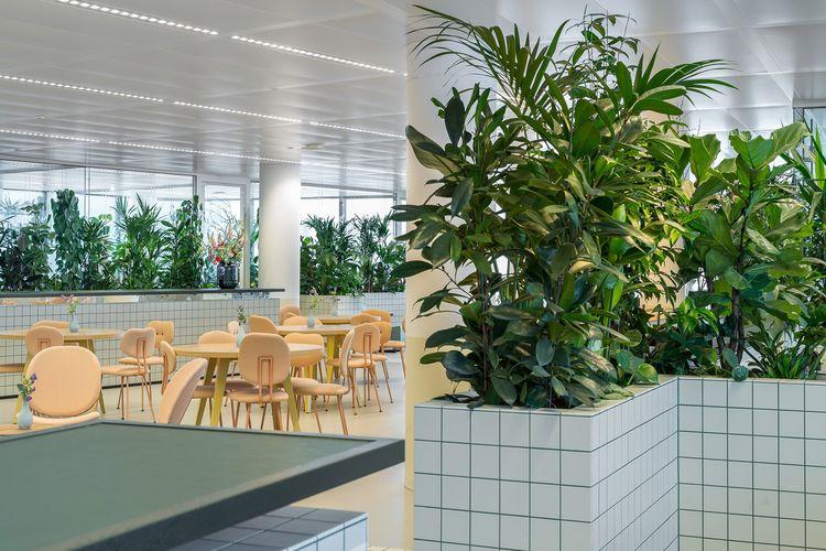 Kantor unik ini sejatinya merupakan kantor pengembang properti bernama Synchroon.