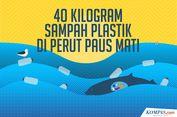 INFOGRAFIK: 40 Kilogram Sampah Plastik di Dalam Perut Paus Mati