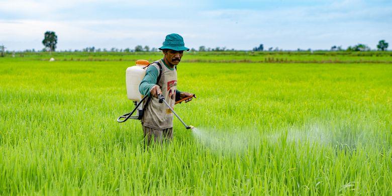 Perpres tentang Lahan Pertanian Pangan Berkelanjutan (LP2B) dibutuhkan untuk menghentikan alih fungsi lahan pertanian dan luas bahan baku sawah yang setiap tahunnya tercatat menyusut seluas 120 ribu hektar