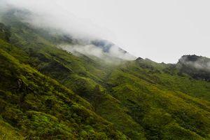 Duduk Perkara Cerita Viral Perempuan Pendaki Gunung Rinjani Disetubuhi Saat Hipotermia...