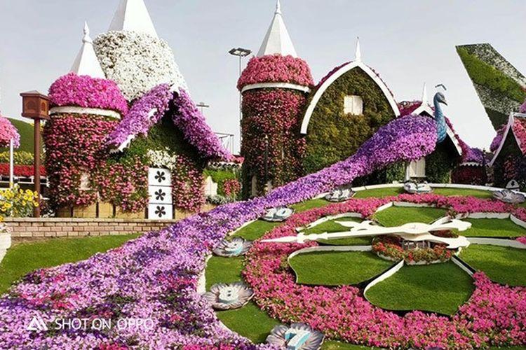 Keindahan Dubai Mircale Garden, diambil dengan OPPO R17 Pro