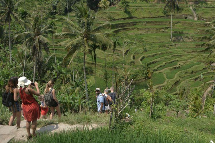 Wisatawan menikmati pemandangan pedesaan sawah berundak (terasering) di Desa Tegallalang, Gianyar, Bali, Senin (1/10/2018).