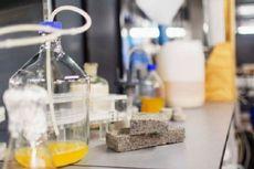 Batu Bata dari Urine Manusia: Hemat Biaya dan Ramah Lingkungan