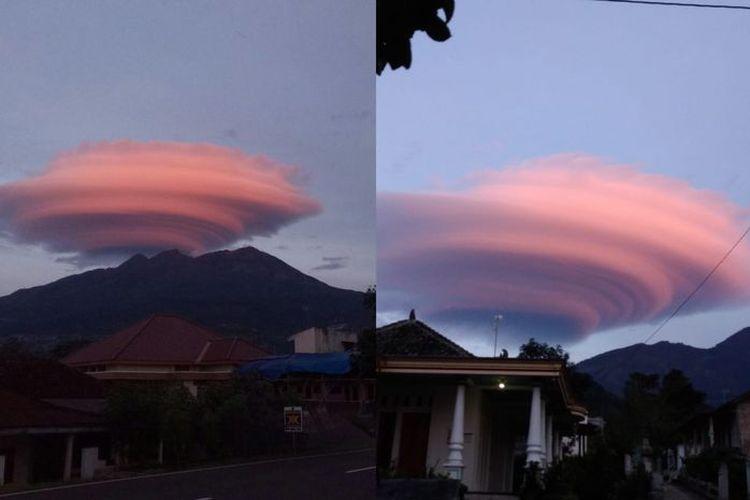 Topi Awan Gunung Lawu