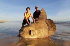 Lagi, Ikan Mola mola Raksasa Terdampar di Pantai Australia Selatan