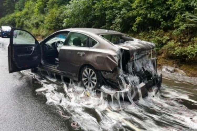 Sebuah foto yang diunggah kepolisian Oregon ke Twitter memperlihatkan sebuah mobil yang rusak setelah tertimpa ribuan kilogram belut yang tumpah di jalan raya.