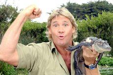 Biografi Tokoh Dunia: Steve Irwin, Sang
