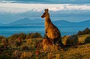 Kapal Nabi Nuh Adalah Pulau Maria di Australia?