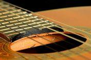 Produsen Gitar Gibson Terancam Bangkrut