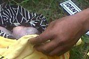 Petugas Kebersihan di Ambon Temukan Mayat Bayi di Tempat Sampah