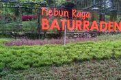Liburan ke Purwokerto, Jangan Lupa Mampir ke Baturraden